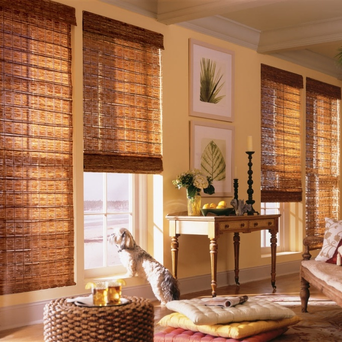 living room design with bamboo shades